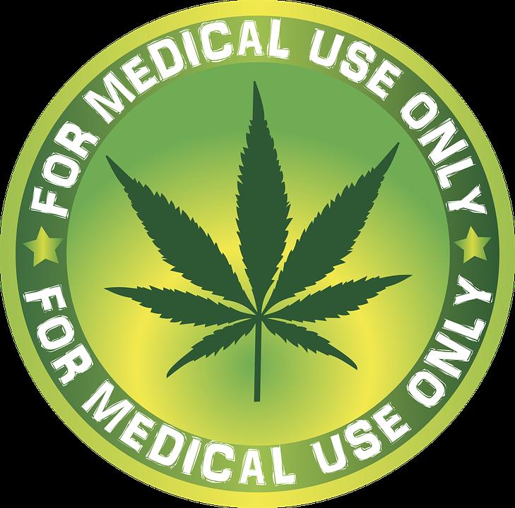 THC-freies Cannabis - das Business-Modell der Landwirtschaft?