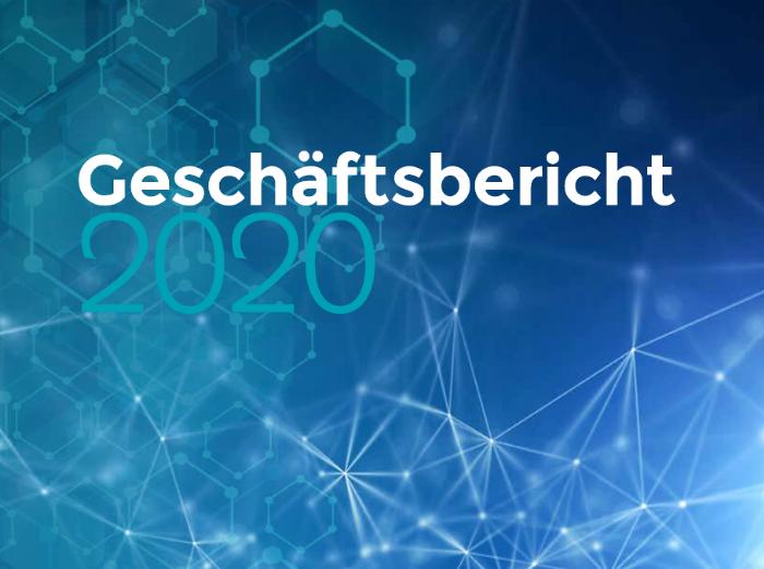 Geschäftsbericht 2020 - JDC Group AG