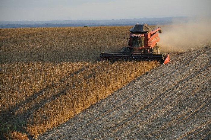 Paraguay Exporte - Proindex Capital AG informiert
