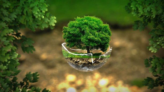 publity AG Nachhaltigkeit in der Unternehmensführung